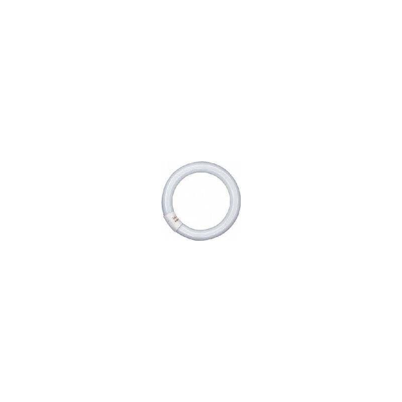 1581167 TUBO CIRCULAR 32W/865 CG10Q FLH1