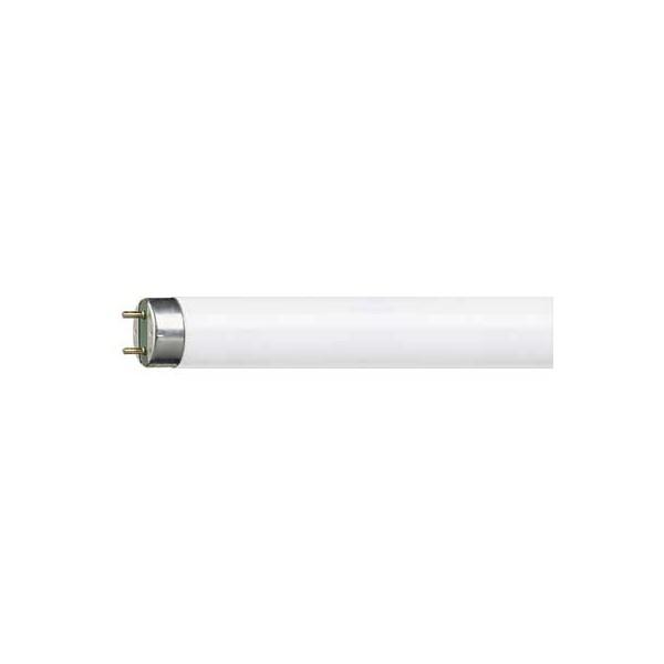 Tubo fluorescente Master TL-D 18W 865 Super 80 Philips