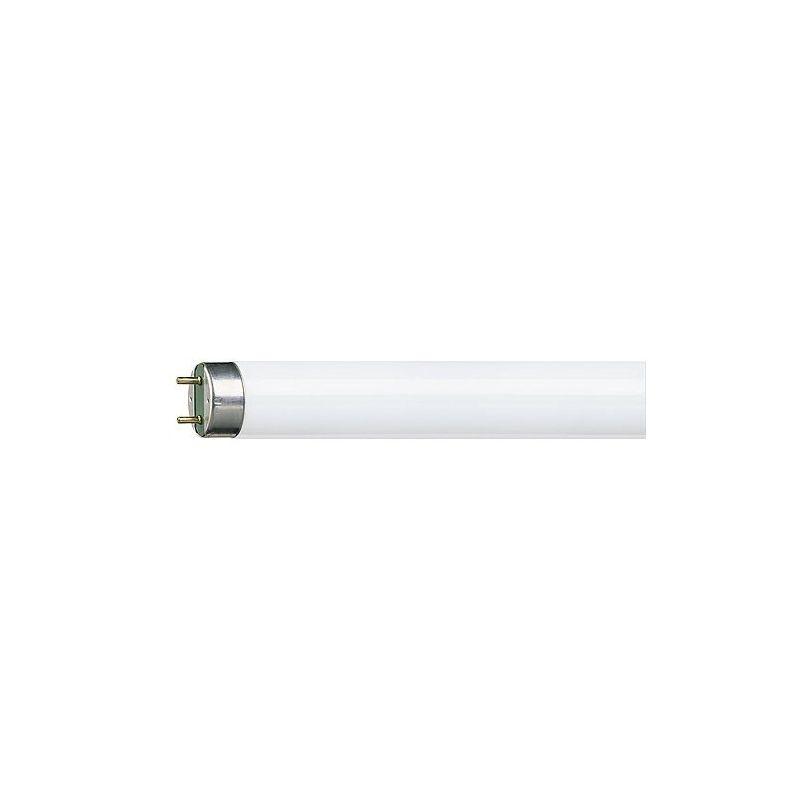 Tubo fluorescente Master TL-D 58W 865 Super 80 Philips