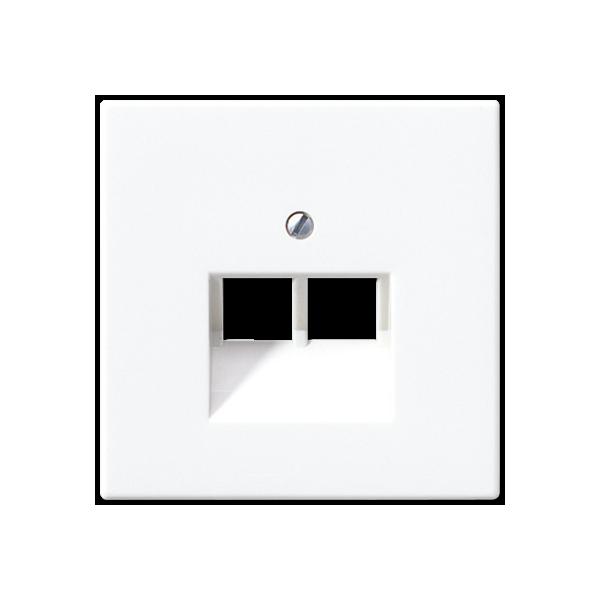 Tapa doble toma telefónica blanco alpino LS969-2UAWW