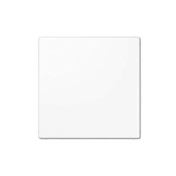 Placa ciega blanco alpino con soporte LS994BW
