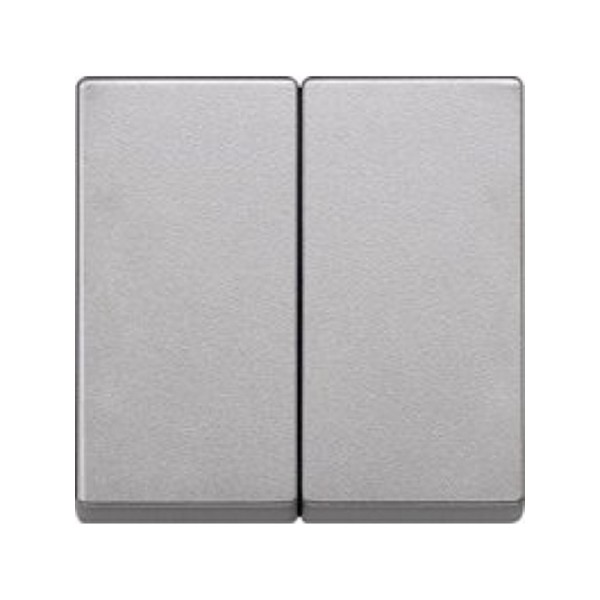 Tecla doble interruptor aluminio Elegance MTN433560