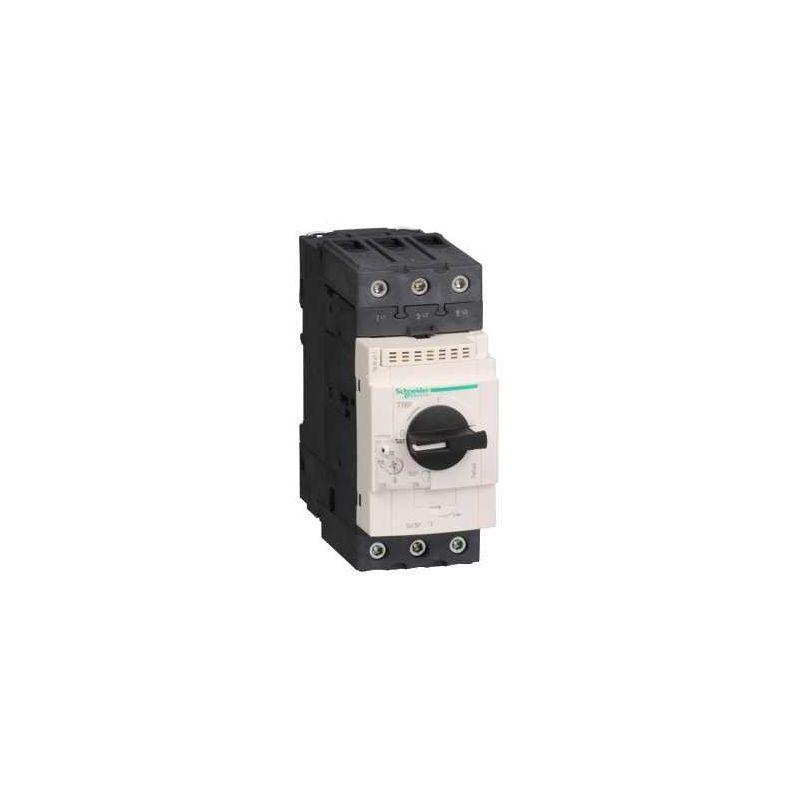 Disyuntor magnetotérmico 48-65A 3P GV3P65 Schneider