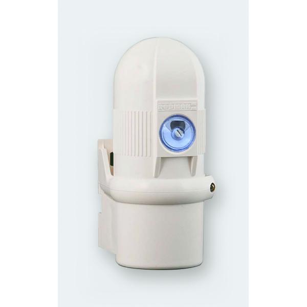 Interruptor crepuscular orientable 10A RF-10