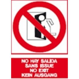 Cartel fotoluminiscente no hay salida