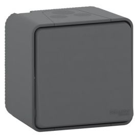 Interruptor bipolar gris monobloc Schneider Mureva Styl MUR35033