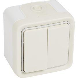 Conmutador doble blanco monobloc Legrand Plexo 069755