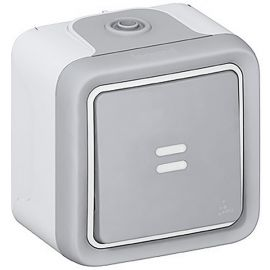 Interruptor-conmutador luminoso monobloc gris Legrand Plexo 069713
