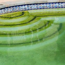 Productos químicos para mantenimiento de piscina limpia
