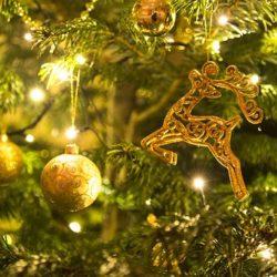 Luces Led de Navidad con 5% de Descuento en Qmadis