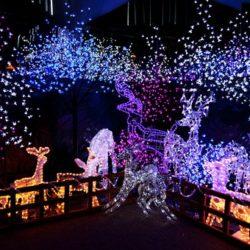 Iluminación con luces de navidad Led en figuras