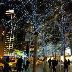 Iluminación con luces de navidad Led en árboles